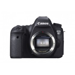 Canon EOS 6D + 24/105 1:4